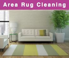 Oriental & Area Rug Carpet Care